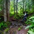 Stream crossing on Lower Elliot.- Goat Lake Trail