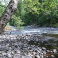 Perfect rock-throwing spots on the banks of the Molalla River.- Day Use Site 11: Molalla River Swimming