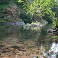 Crystal clear waters of the Molalla River.- Day Use Site 11: Molalla River Swimming