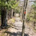 The narrowest part of the North Rim.- Whetstone Gulf Rim Trail