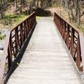 The bridge to the beginning of the North Rim Trail.- Whetstone Gulf Rim Trail