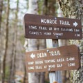 The junction of the Dean and Monroe trails.- Camels Hump Via the Monroe Trail