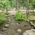 A small path between campsites.- Pebble Ford Campground
