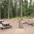 The sites are large but not terribly private.- Pebble Ford Campground