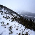 Treeline near Mount Washington.- Mount Washington: Lion Head Winter Route