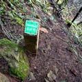 A helpful trail marker.- Franklin Ridge Loop Hike