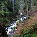 Multnomah Creek.- Franklin Ridge Loop Hike