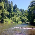 Looking upstream at the North Santiam River from the boat ramp at John Neal Memorial Park.- John Neal Memorial Park Campground
