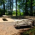 Picnic tables and a fire ring at the group camp area.- John Neal Memorial Park Campground
