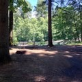 A typical campsite at John Neal Memorial Park.- John Neal Memorial Park Campground
