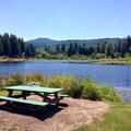 Main pond and picnic area at John Neal Memorial Park.- John Neal Memorial Park Campground