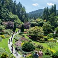 The Sunken Gardens used to be an old limestone quarry.- The Butchart Gardens