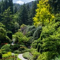 The Sunken Garden.- The Butchart Gardens