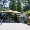 The Rose Carousel.- The Butchart Gardens