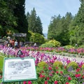 The gardens with a view of Tod Inlet in the distance.- The Butchart Gardens