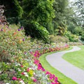Flower-lined paths in Beacon Hill Park.- Beacon Hill Park