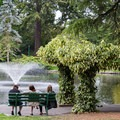 Enjoying the water features in Beacon Hill Park.- Beacon Hill Park