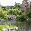 Stone bridge in Beacon Hill Park.- Beacon Hill Park