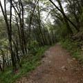 South Yuba River Trail- South Yuba River Trail