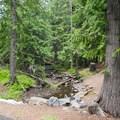 Eightmile Creek runs through the campground.- Eightmile Campground