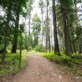 Spur trail to Eightmile Loop.- Eightmile Campground