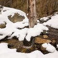 The creek may be running even in winter.- Hidden Falls Snowshoe