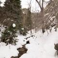 The ungroomed trail to Hidden Falls runs along the creek.- Hidden Falls Snowshoe