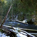 Snow-covered banks of the McKenzie River.- McKenzie River Trail: Trail Bridge to Tamolitch Pool