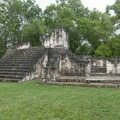 Side of the Central Acropolis.- Tikal National Park