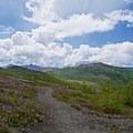 The trail to Harry's Ridge in Mount St. Helens National Volcanic Monument.- Harry's Ridge via Johnston Ridge Observatory