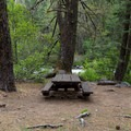 The day use picnic table that lies at the end of the campground.- Hole-in-the-Ground Campground