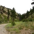 Trial Curves to the Right- Swakane Canyon