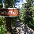 A trail to the beach and day use area runs through the campground.- Alturas Lake Inlet Campground