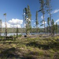 Boat launch area and picnic spot along the lake.- Smokey Bear Campground + Boat Launch