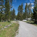 Typical site at Chinook Bay Campground.- Chinook Bay Campground