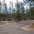 Typical site at Mount Heyburn Campground.- Mount Heyburn Campground