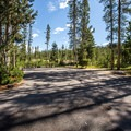 Typical double site at the campground.- Redfish Lake Outlet Campground