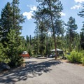 Typical site at the campground.- Redfish Lake Outlet Campground
