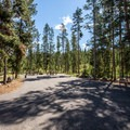 Another double site.- Redfish Lake Outlet Campground