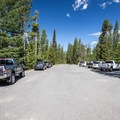Day use parking area.- Redfish Lake Outlet Day Use Area