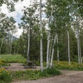 A few of the sites are tucked in the aspens.- Sunrise Vista Campground