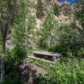Picnic areas within the first 0.5 miles of the trail.- Grizzly Creek Trail