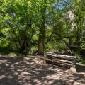 More picnic areas.- Grizzly Creek Trail