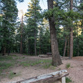 Picnic area at the campground.- Devils Head Campground