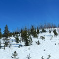 Looking ahead at Potato Hill, an easy cross-country destination.- Potato Hill Snowshoe