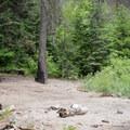 A riverside camp.- Grande Ronde River: Minam to Troy