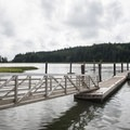 The small dock at Willapa Bay National Wildlife Refuge.- Willapa Bay National Wildlife Refuge, Long Island Unit