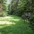 The junction with the Cedar Grove Trail.- Willapa Bay National Wildlife Refuge, Long Island Unit