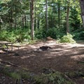 Typical site in Pinnacle Rock Campground.- Pinnacle Rock Campground, Willapa Bay National Wildlife Refuge