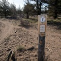 Trail junctions in the Maston area are well marked.- Maston Trails Outer Loop